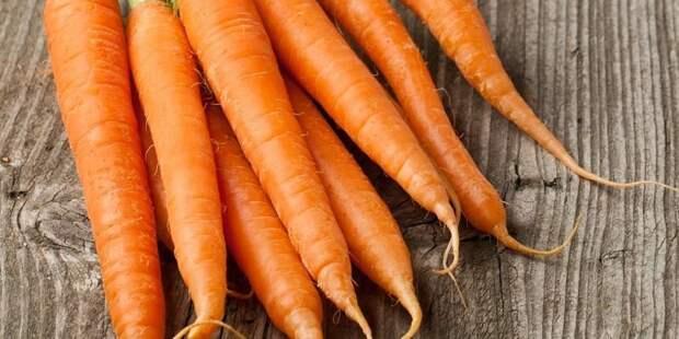 Морковь сахарная мечта f1