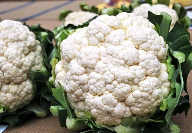 Как посадить цветную капусту