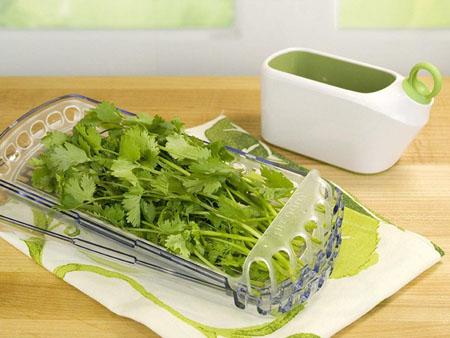 Как сохранить свежую зелень в холодильнике