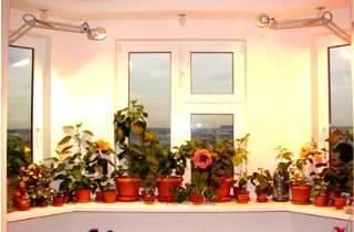 Энергосберегающая лампа для растений