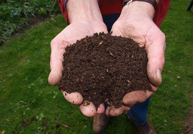 Как правильно делать компост