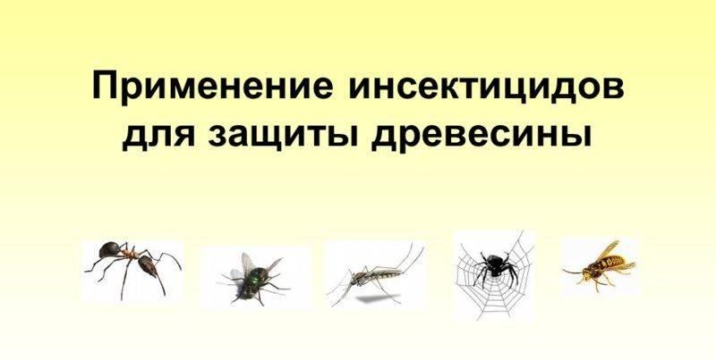Инсектицидное действие это
