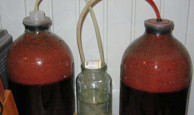 Производство вина в домашних условиях из винограда