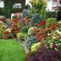 Весь огород цветы в саду