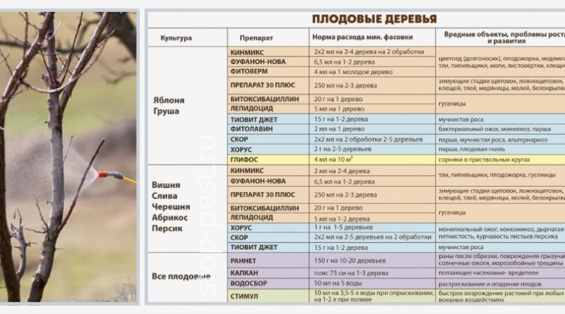 График обработки сада от вредителей и болезней