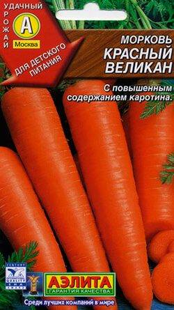 Семя моркови