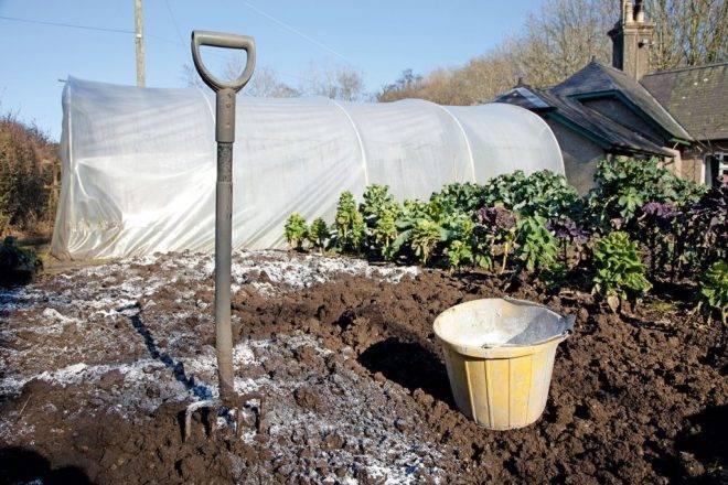 Известка для почвы
