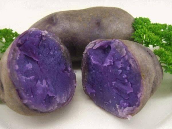 Картофель синий внутри