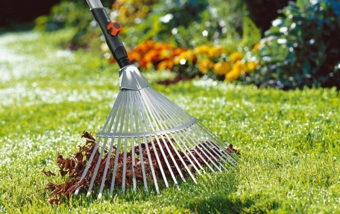 Чем удобрить газон на зиму