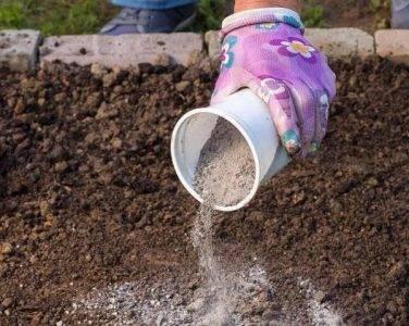 Для чего нужна доломитовая мука на огороде
