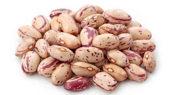 Семена фасоли