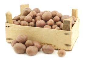 Почему темнеет картофель на воздухе