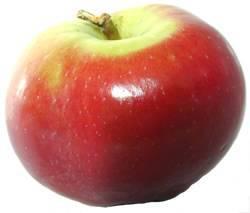 Самые вкусные сорта яблок в украине