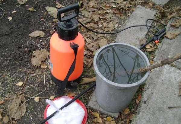 Опрыскивание карбамидом осенью