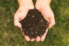 Как подготовить почву к зиме