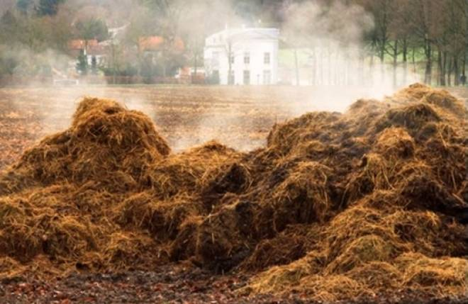 Осенняя подготовка почвы