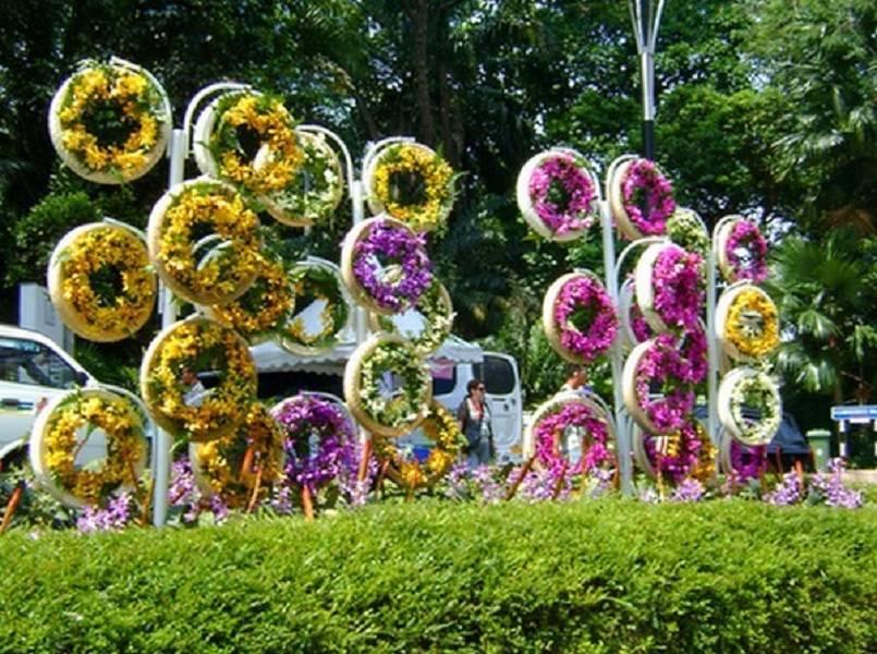Цветы вертикальные