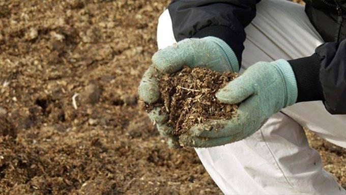 Обработка опилок перед внесением в почву