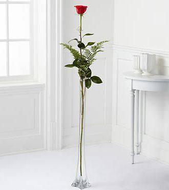 Розы на длинной ножке фото