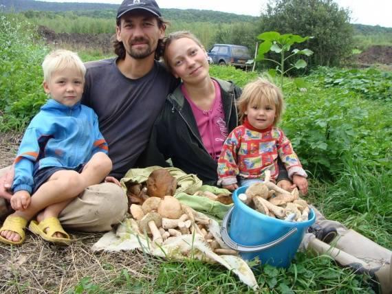 Природное земледелие огород слоенки от людмилы