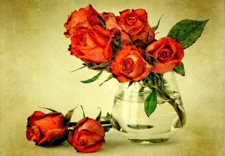 Как продлить свежесть роз в вазе