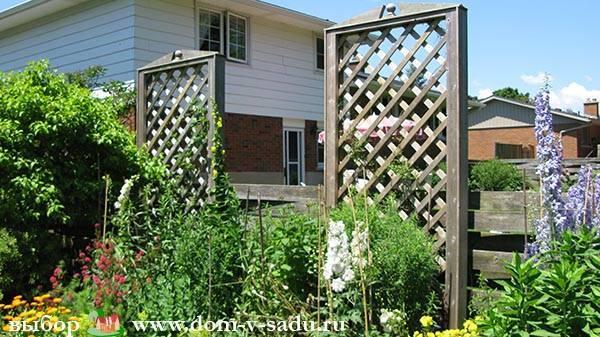 Как озеленить двор в частном доме