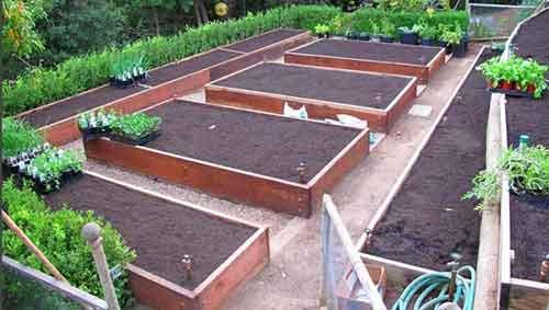 Организация огорода на участке