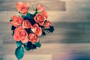 Средство для срезанных цветов