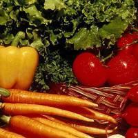 Овощи в саду