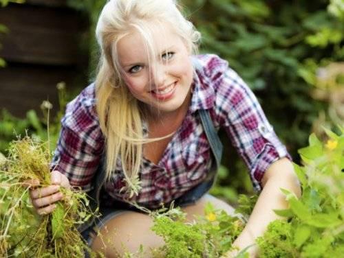 Как уничтожить сорняки на огороде химическим способом