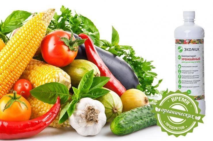 Микробиологические препараты для защиты растений