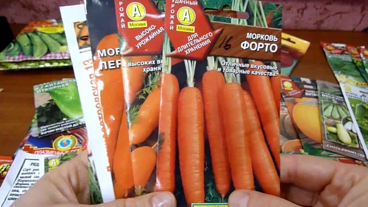 Какие сорта моркови самые лучшие