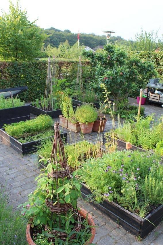 Красота на даче и в саду фото