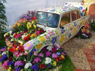 Оформление дорожек в саду цветами