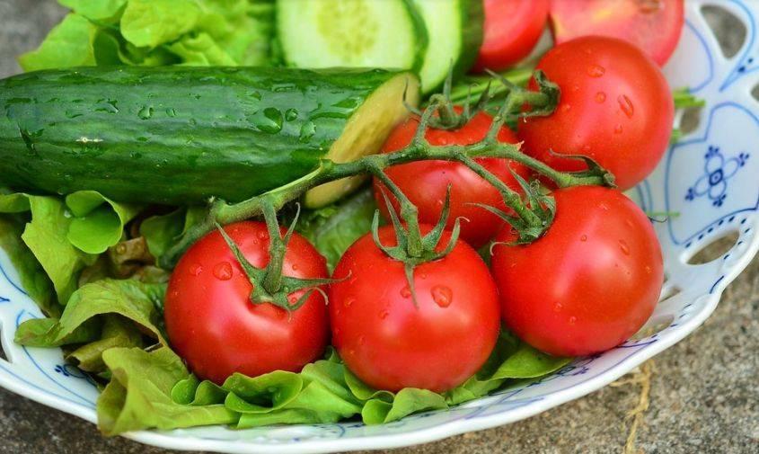 Как выращивать арбузы в теплице
