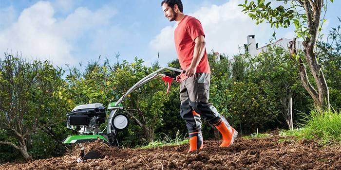 Надо ли копать огород под зиму