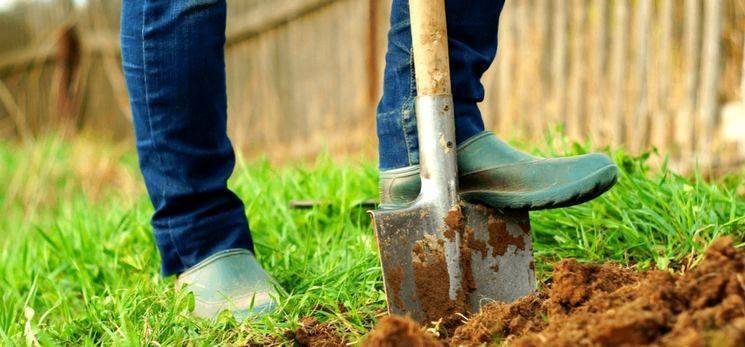 Внесение минеральных удобрений осенью