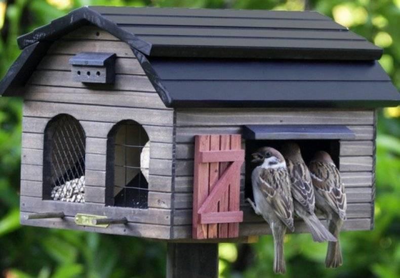 Как разукрасить кормушку для птиц