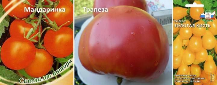 Кистевые помидоры сорта фото