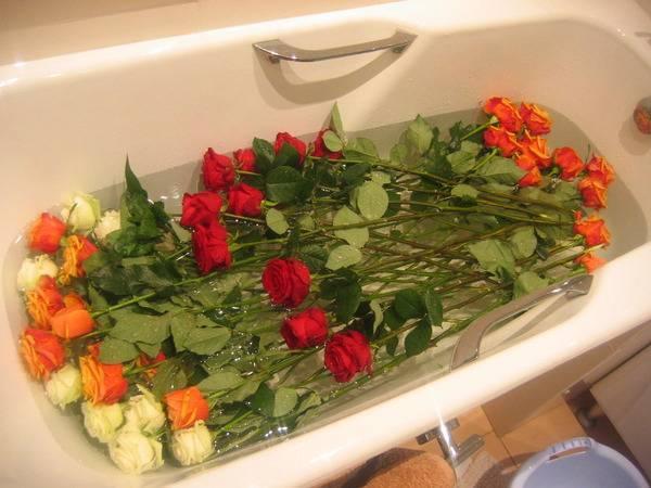 В какую воду надо ставить розы