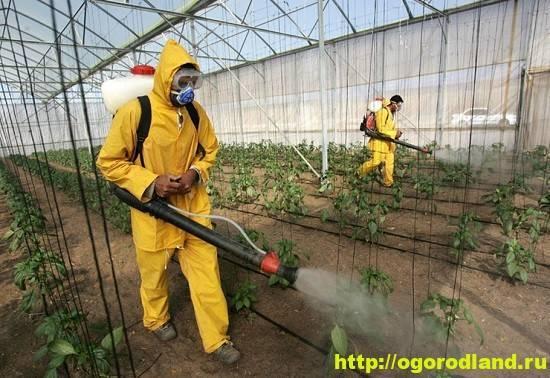 Химическая обработка растений