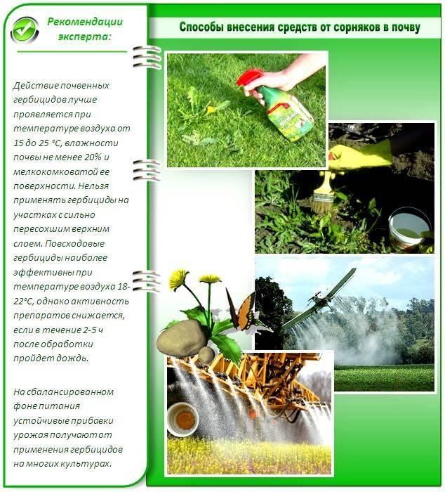 Отрава от сорняков