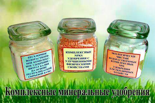 К минеральным удобрениям относится