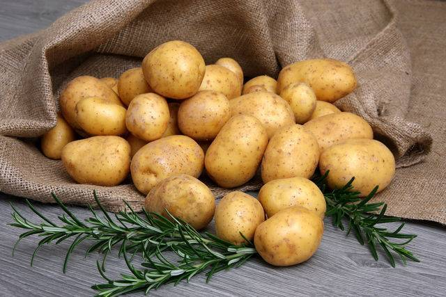Красный картофель для жарки или варки