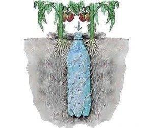 Организация полива на дачном участке