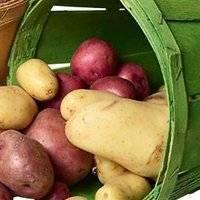 Районированные сорта картофеля