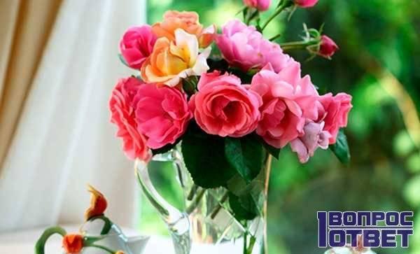 Как продлить жизнь розам в домашних условиях