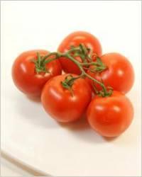 Рецепт соленых помидор на зиму