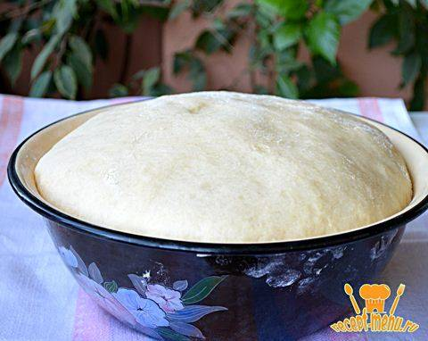 Самое вкусное дрожжевое тесто для пирожков