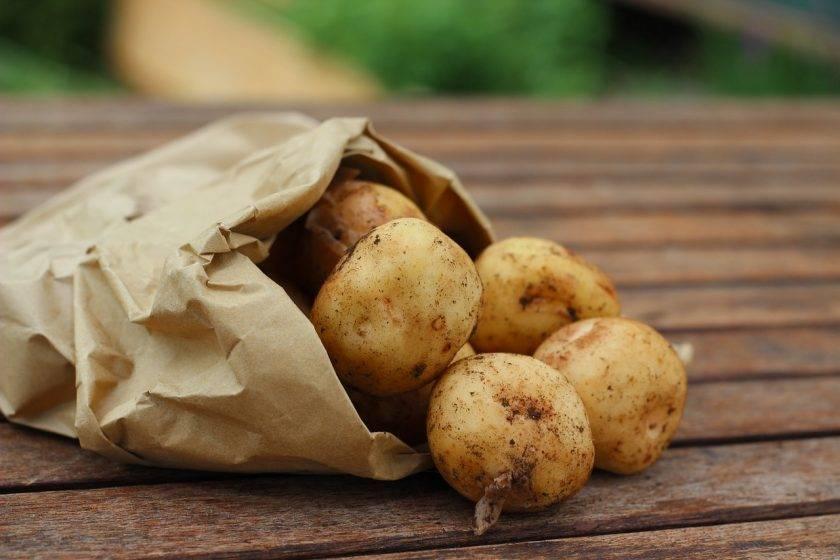 Красивые блюда из картофеля